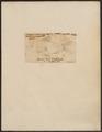 Coregonus cyprinoides - 1700-1880 - Print - Iconographia Zoologica - Special Collections University of Amsterdam - UBA01 IZ14700001.tif