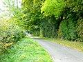 Cotswold lane - geograph.org.uk - 1515270.jpg