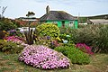 Cottage garden - geograph.org.uk - 1962972.jpg
