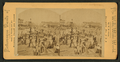 Cotton traffic, New Orleans, La, by Chase, W. M., 1818 or 19-1905.png