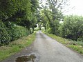 Country Road, Co Dublin - geograph.org.uk - 1901777.jpg