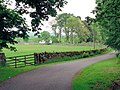 Country lane - geograph.org.uk - 484836.jpg