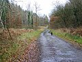 Course of Roman Road - geograph.org.uk - 1059397.jpg