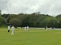 Cricket match at Winstanley (geograph 4661480).jpg