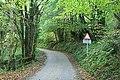 Cruwys Morchard, lane by Penn Coppice - geograph.org.uk - 263924.jpg