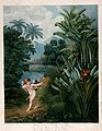 Cupid inspiring plants with Love, in a tropical landscape. C Wellcome V0042992.jpg