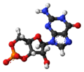 Cyclic-guanosine-monophosphate-anion-3D-balls.png