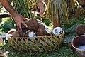 DSC01090 Culture of Samoa.jpg