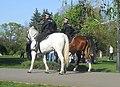 DSCN0957-politia-calare-herastrau-2011.04.24.jpg