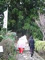 Daimonzaka8628.JPG