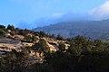 Dana - panoramio.jpg