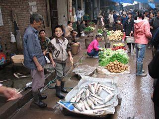 Rural society in China