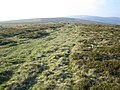 Dartmoor, Dunstone Down - geograph.org.uk - 432670.jpg