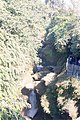 Davis Fall, Nepal-WLV-1775.jpg