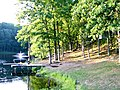 Davlin Lake OH - panoramio.jpg