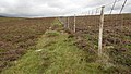 Deer Fence (An Sgòr Dubh) on Mar Lodge Estate (29JUL17) (9).jpg