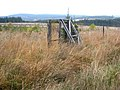 Deer proof fence, Kielder Forest - geograph.org.uk - 599202.jpg