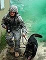Defense.gov photo essay 080605-F-9963E-112.jpg