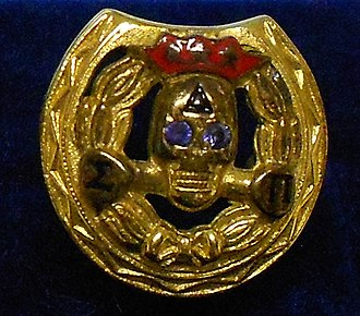 Delta Sigma Pi - Official badge, vintage 1970s