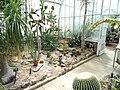 Desert House - Wellesley College - DSC09729.JPG