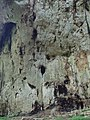 Devetashka cave 019.jpg