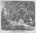 Die Gartenlaube (1863) b 301.jpg