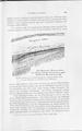 Die Klimate der geologischen Vorzeit 169.pdf