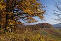 Diefenbach 11-2011 - panoramio.jpg