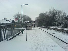 Dingle Road Railway Station Snow.jpg