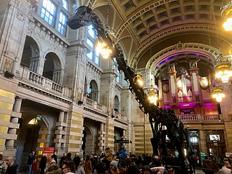 Kelvingrove Art Gallery and Museum - The Centre Hall, looking towards the Pipe Organ flanked by original electroliers, with Dippy the Diplodocus on tour January–May 2019.