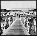 Docksides in Black & White.jpg