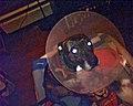 Dog wearing Elizabethan collar pet cone.jpg