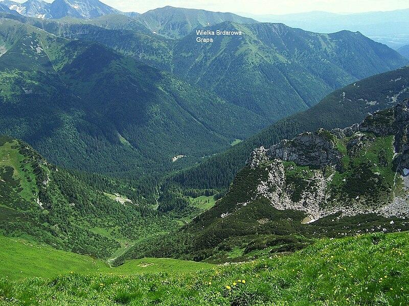 File:Dolina Cicha a 11.jpg