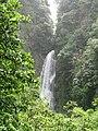 Dominica IMG 4876.jpg