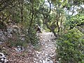 Dorgali - Dolmen di Monte Longu (08).jpg