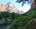 Down Along the Virgin, Zion NP 5-14 (16128722191).jpg