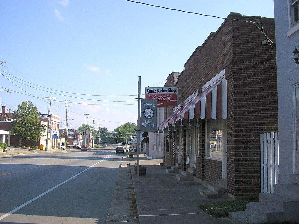 The population density of Shepherdsville in Kentucky is 296.49 people per square kilometer (768.1 / sq mi)