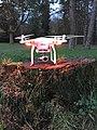Drohne Dji Phantom 3 drone (22916589603).jpg
