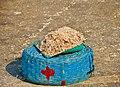 Dry fish - Uttan - Velankanni Beach.jpg