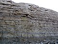 Dundee Limestone over Lucas Dolomite (Middle Devonian; Auglaize Quarry, near Junction, Ohio, USA) 13 (48888456143).jpg