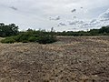 Dunes Charmes Sermoyer 24.jpg