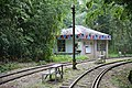 Duolin Station in the bamboo forest.jpg