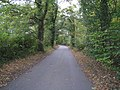 Early signs of autumn - geograph.org.uk - 1519062.jpg