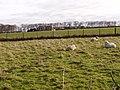 East Leys Farmland - geograph.org.uk - 1215269.jpg