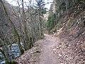 Eboulement dans les gorges de l'Areuse - panoramio.jpg