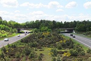 A1 motorway (Netherlands) - Ecoduct Harm van de Veen.