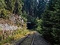 Eisenbahnlinie-Saalestauseen-8132383 DxO.jpg