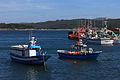 Embarcacións no porto de Camariñas 124.jpg