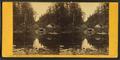 Emerald Pool, near Glen House, N.H, by Pease, N. W. (Nathan W.), 1836-1918.png
