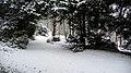 Entrée du Domaine de Vert-Mont sous la neige - panoramio.jpg